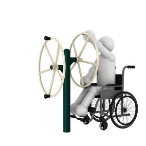 Arm Wheel Gym Equipment For The Disabled | Green Air